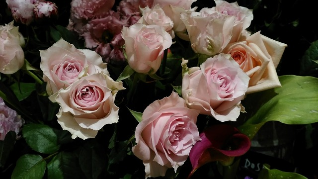 薔薇の生け花