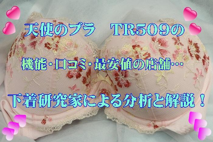 天使のブラ「魔法のハリ感」509のブラジャーの上にタイトル表示